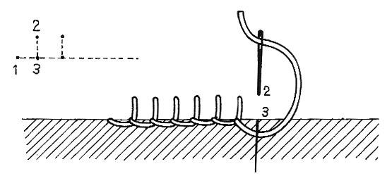 Point de feston (diagramme).